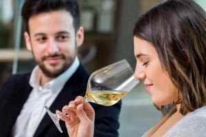 Basis Wijncursus Online